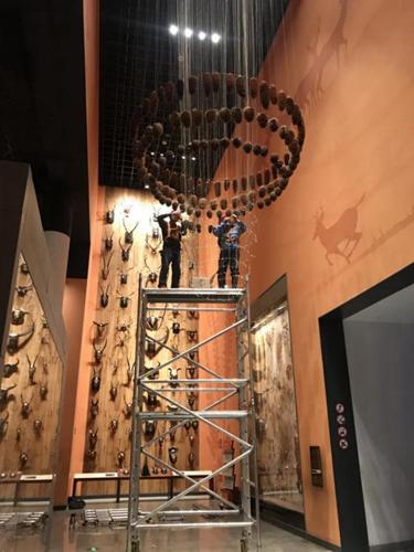 自然史研究中心开展对松果塔展品的维护工作
