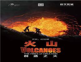 """带您感受""""水深火热""""的极致体验 ——上海科技馆新片上映"""