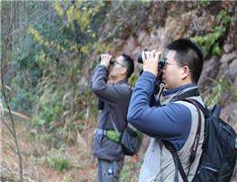 上海科技馆赴马头山进行鸟类调查