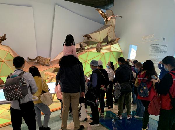 """生物多样性主题月""""世界雪豹日""""活动在上海自然博物馆顺利举行"""